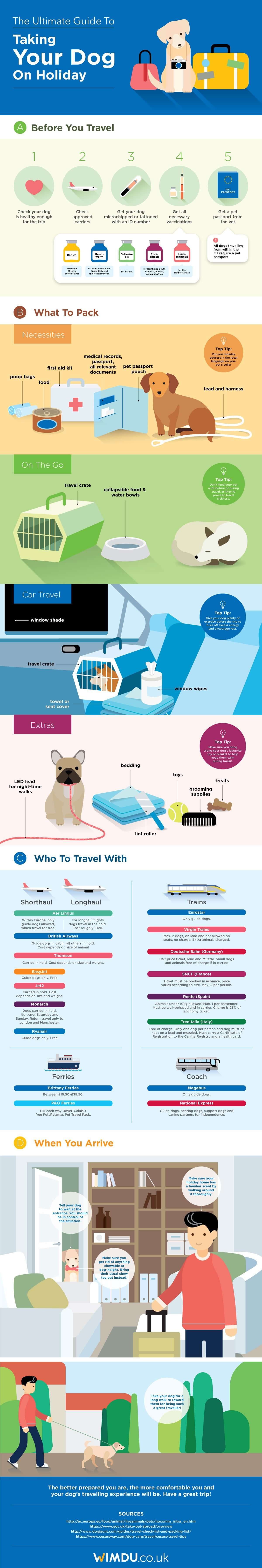 Can I Traveling With A Dog In Delta Airlines