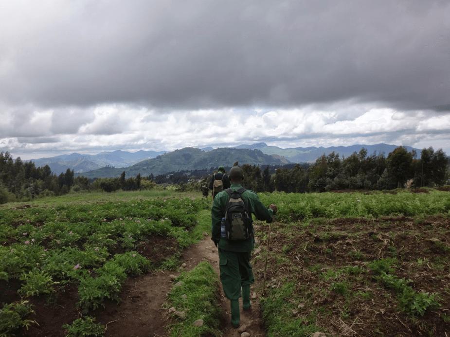 rwanda-guides