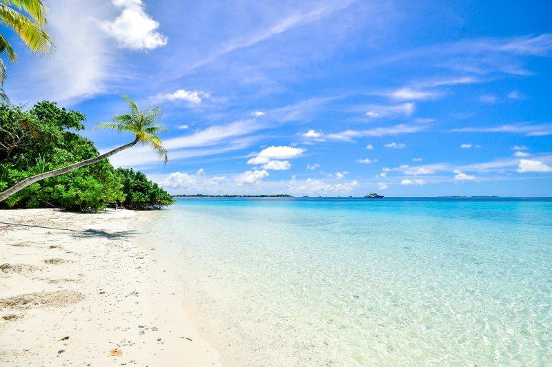 beach sunscreen travel toiletries